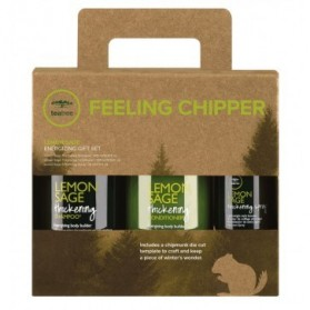 Paul Mitchell Tea Tree Lemon Sage Energizing Gift Set