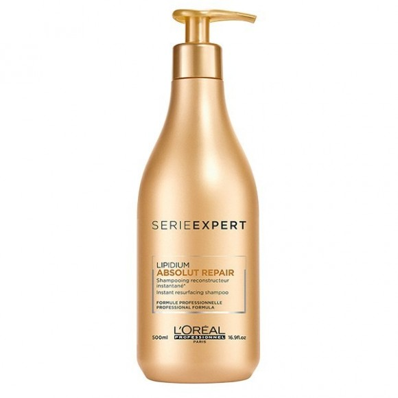 L'Oreal SE Absolut Repair Lipidium Shampoo (500ml)
