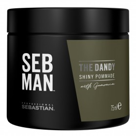 Sebastian SB The Dandy Pomade (75ml)